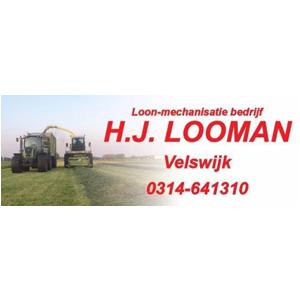 brv-sponsoren-looman-loonbedrijf